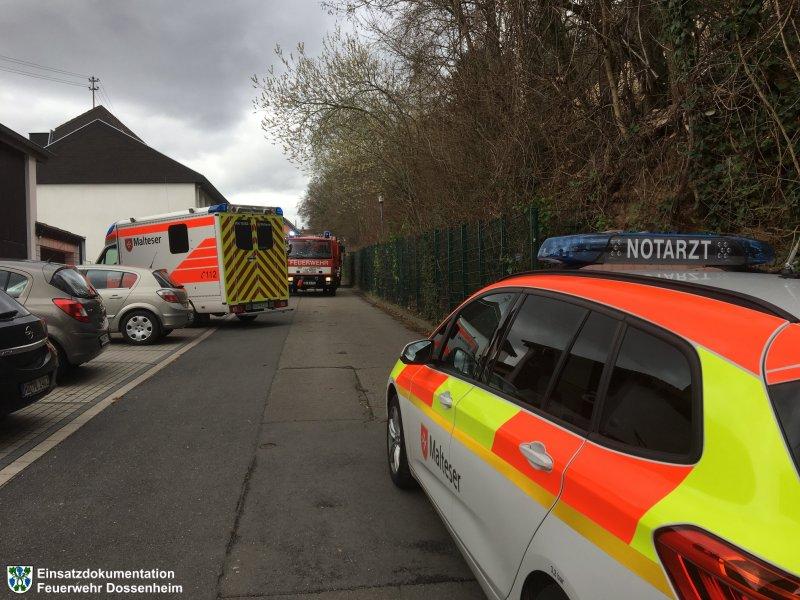 Hilfeleistung vom 11.03.2019  |  Feuerwehr Dossenheim (2019)